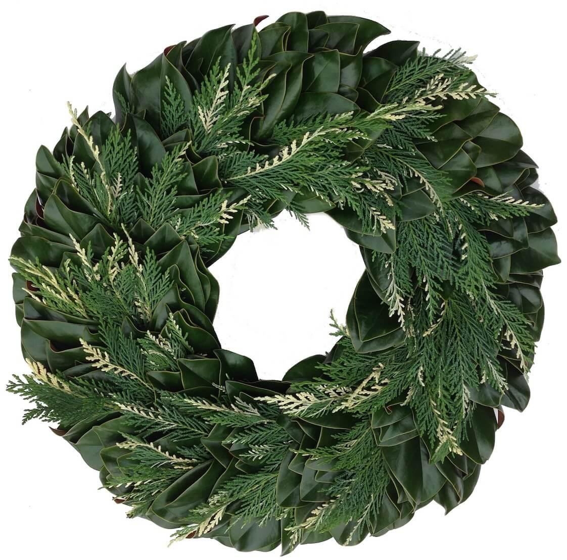 Greene Magnolia Variegated Leyland Christmas Wreath