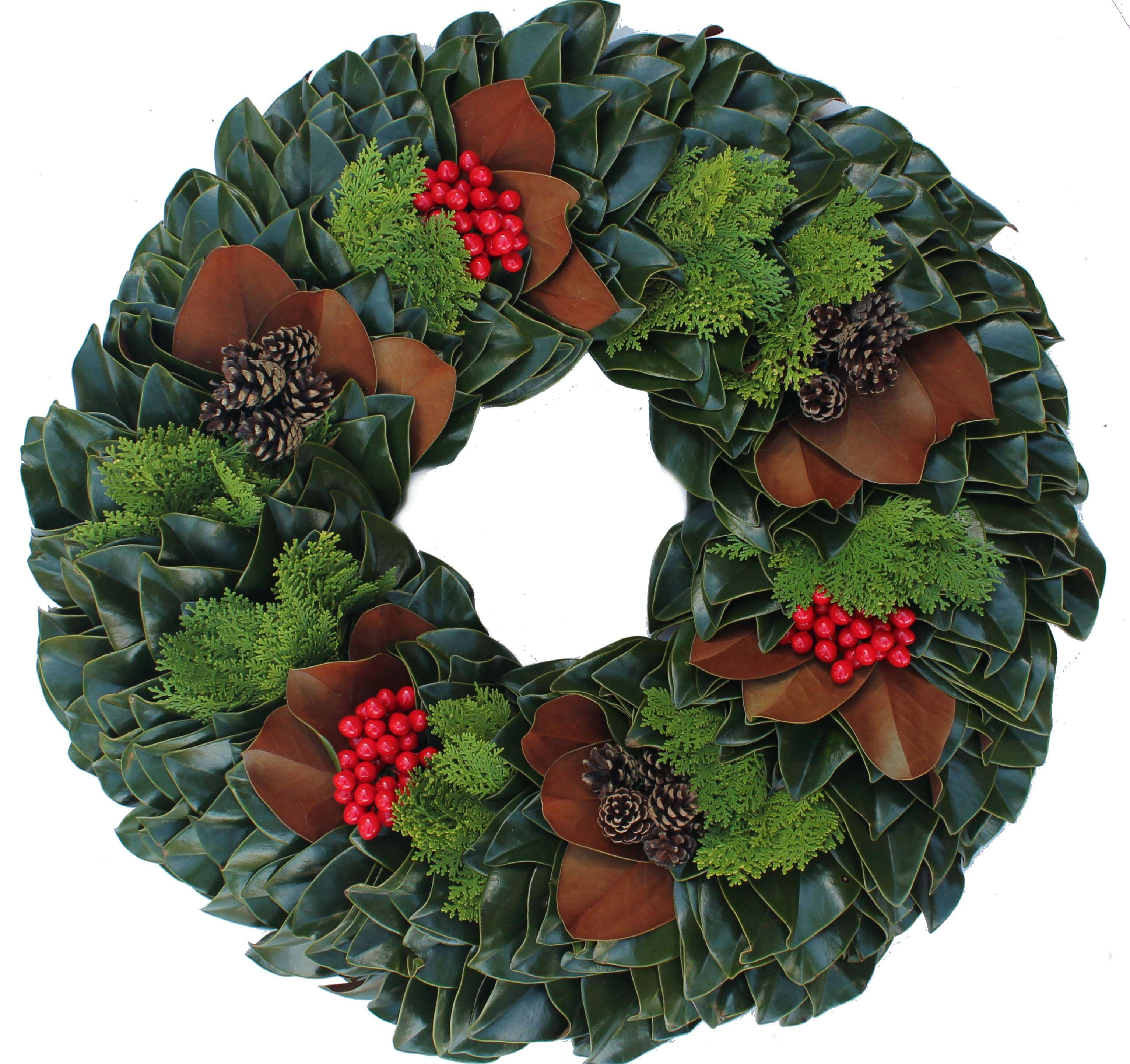 Magnolia Arbavida Christmas Wreath