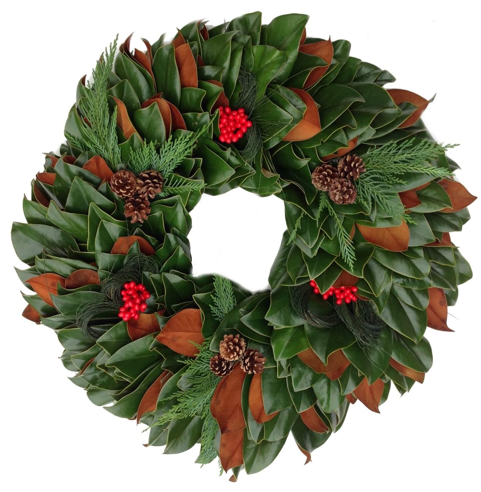 Magnolia Leyland Christmas Wreath